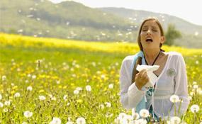 аллергия летом