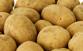 картофель в народной медицине